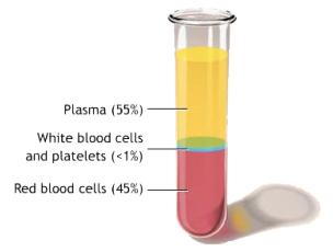 PRP Sri Lanka Colombo Vampire Lift Platelet Rich Plasma Dr Dulip Dr Thushan